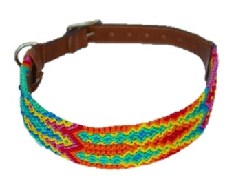 Extra Large Dog Collar XL16
