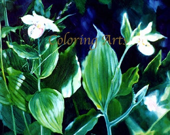 Lady Slippers- floral painting -8x10 instant download-from an original painting by Carol Hill