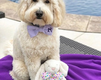 Personalized Lavender Gingham Dog Bow Tie • Puppy Pet Bow Gift by Three Spoiled Dogs