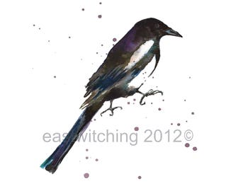 Watercolor Magpie print - 8x10 inches