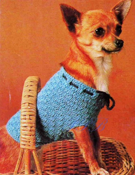 Knitted Dog Coat Chihuahua Dog Pattern Pdf Knitting