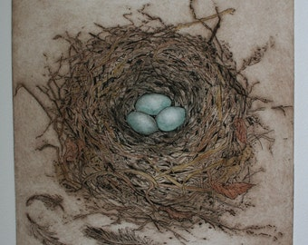Robin's Nest etching, Intaglio , hand printed