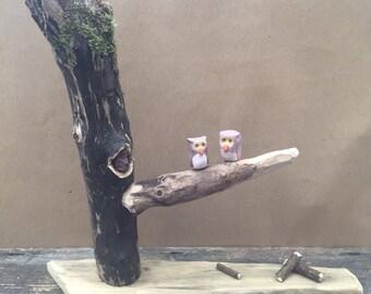 Handmade Clay Caricature Owl Family On Tree Ornament