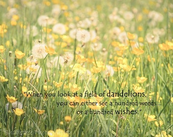 Dandelion Wishes Field Flowers Pastel Yellow Green Dreamy Botanical Nursery Decor Inspirational Quote Nature Photography, Fine Art Print