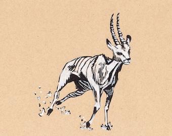 "Antelope Running - 8""x7"" - Original Illustration"