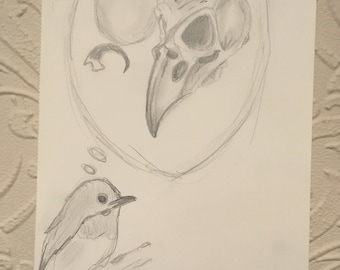 Bird debates birth and death