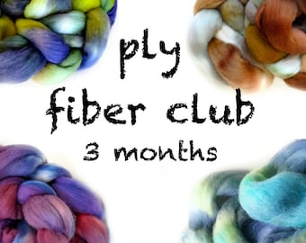 Hand Dyed Wool Roving Fiber Club 3 months. Customizable monthly subscription for Spinning or Felting. Gift for Spinners, Gift for Crafters.