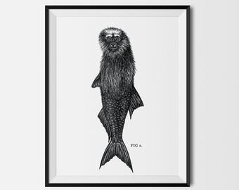 Feejee Mermaid Print