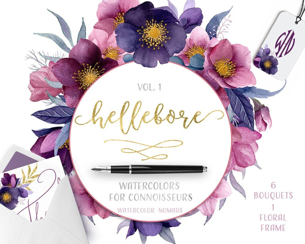Clipart flowers purple watercolour flower clipart hellebore zoom izmirmasajfo Images