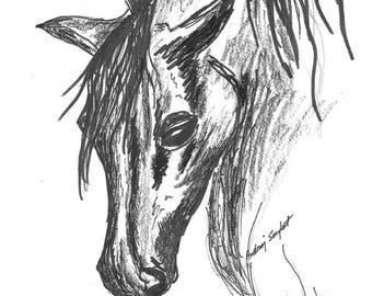 Horse Print Portrait from my original Illustration Drawing Instant Digital Download