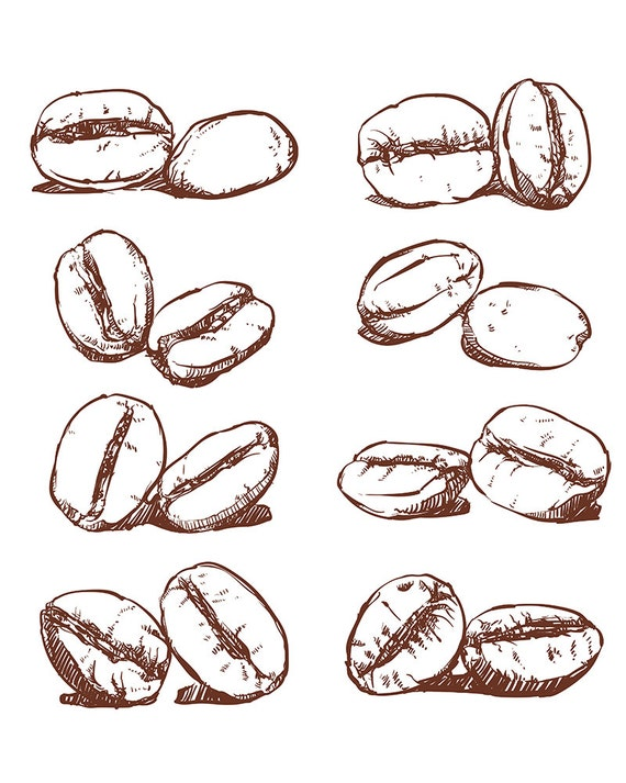 80 off sale coffee bean hand drawn vector sketch of coffee for How to draw a coffee bean
