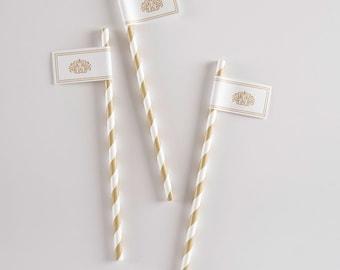 Carolina Striped Drink Straw with Flag