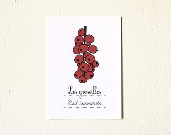 Red Currants Spring Garden Art - Retro French Kitchen Home Decor - 5x7 reproduction print - Minimalist Spring Fruit Nature Botanical