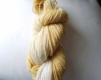 Gradient hand dyed Columbia x Rambouillet blend 2 ply worsted weight yarn