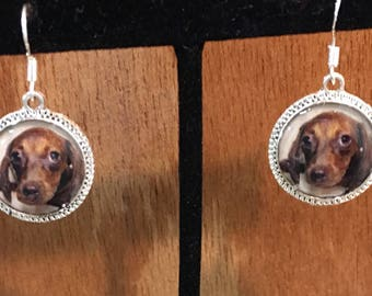 Dachshund Dog Puppy Earrings 3d Red Brown Picture Short Haired Silver Dimensional