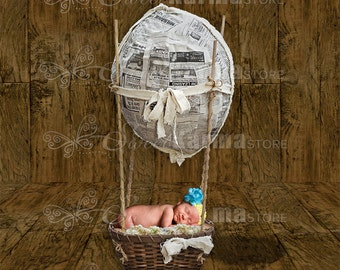 Balloon Basket Newborn or Pet Digital Photography Background PSD File 35