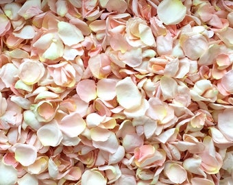 Freeze Dried Rose Petals, Blush, 5 cups of REAL rose petals, perfectly preserved