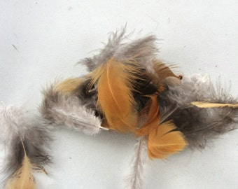 organic cruelty free feathers ginger and black 24 packs