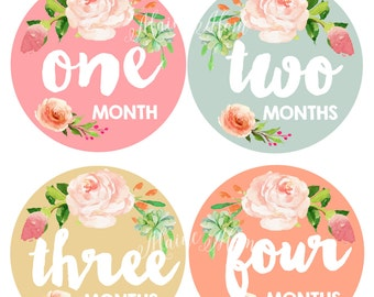 FREE GIFT, 12 different colors, Baby Girl Month Stickers, Monthly Baby Stickers,  Bodysuit Stickers, Floral, Flowers, Watercolor Roses