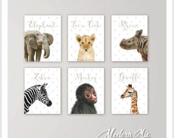 Baby Animals Nursery Decor Safari Nursery Art Baby Animal Nursery Prints Baby Elephant Lion Rhino Zebra Monkey Giraffe Set of 6 pictures