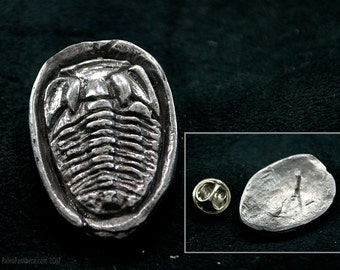 Trilobite Fossil Pin - paleontology, fossils, ancient, silver trilobite, trilobite jewelry, paleontology pin, prehistoric pin, brooch