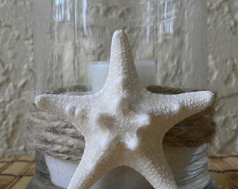 Candle Holder, Candle, Beach Candle with Star Fish, Candle holder, Sea Star; Air, Land and Sky Candle, Tealight Candle, beach decor