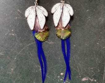 Feathers & cicada wings earrings