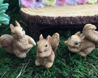 Mini Squirrels, Mini Squirrel Figurines, 3 Piece Set,  Fairy Garden Accessory, Miniature Gardening, Home & Garden Decor, Topper, Sitter