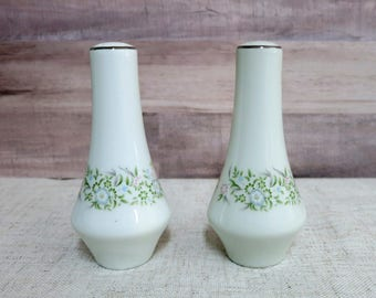 Vintage China Salt and Pepper Shakers, China Salt and Pepper Shakers, Floral Salt and Pepper Shakers - V293