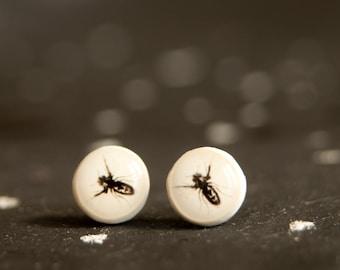 Bee Studs Earrings,  Bumble Bee Earrings,  Honey Bee Earring Post, Insect Jewelry, Bee Jewelry, Stud Earings