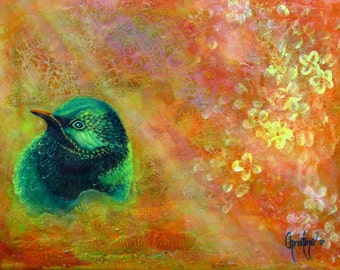 Bird Art , Bird and Flower Art ,  beautiful birds, Limited Edition Prints, Blossom