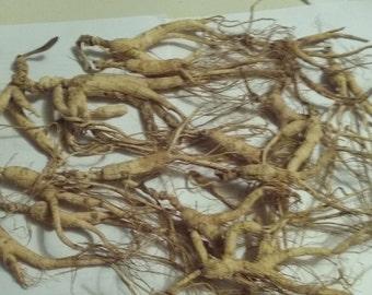 wild ginseng root 224 gram 1/2 pd
