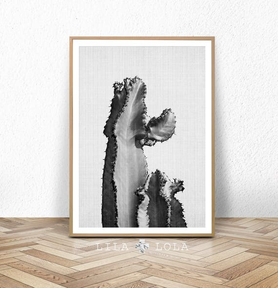 Cactus Print, Black and White Wall Art, Photography, Photo, Digital Download, Printable Poster, South Western Decor, Desert Cactus Decor