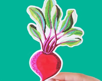 Vinyl Beetroot Sticker - Waterproof Sticker, Food Decor, Laptop Sticker, Phone Sticker, Ipad Sticker, Bumper Sticker
