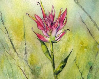 Indian Paintbrush with Branches ORIGINAL watercolor painting 8x10 wildflowers pink flower nature garden summer Montana by Christy Sheeler