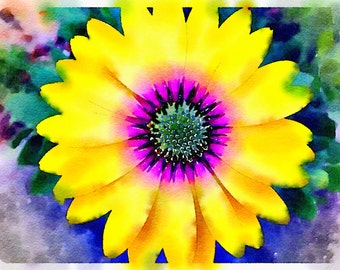 Watercolor Print - Yellow Daisy - Floral