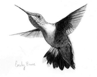 Hummingbird print pencil Hummingbird picture Hummingbird drawing Hummingbird wall art Hummingbird decor Hummingbird art print