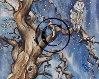 Fine Art piece - Original watercolor, owl, print, reproduction, giclee