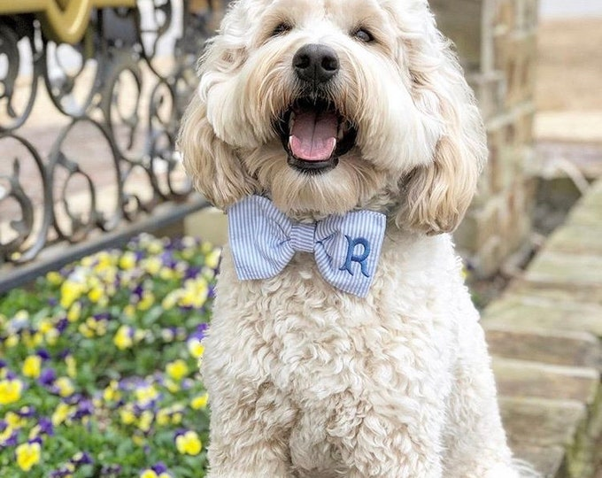 Featured listing image: Monogram Blue Seersucker Bow Tie || Small Medium Large  Personalized Preppy Bowtie || Custom Gift by Three Spoiled Dogs