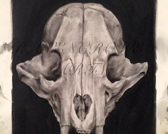 Charcoal Bear Skull Print