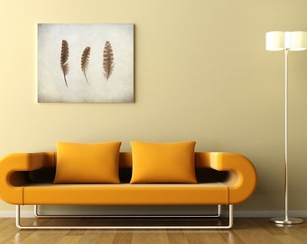 Feder-Foto, skandinavische Kunst, Foto malen, 3 natürliche Federn, shabby chic Wohnkultur, 8 x 10 drucken