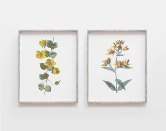 Wall Art/ Set of 2 Prints/ Set of two prints/ Vintage Yellow Flower Prints/ Printable Art/ Living room Decor/ Bedroom Wall Art/Above Bed Art