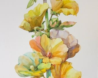 Floral Fine Art Watercolor Painting Yellow Mallow Hollyhock Flower Art - Original Watercolour Home Decor Botanical illustration