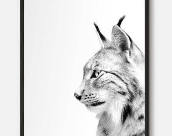 Lynx Print, Lynx Photo, Black And White Home Decor, Animal Photography, Animal Forest Print, Lynx Wall Art, Woodlands Animal, Printable Art