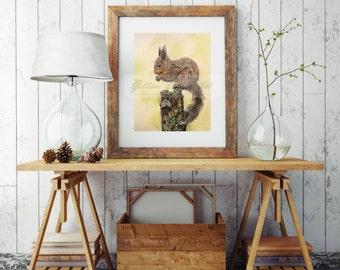 Red Squirrel Fine Art Print // Giclee Print // Wildlife Art // British and Irish Wildlife // European Squirrel // Sciurus vulgaris Gift Idea
