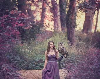 DISCOUNTED 8x12 Fantasy Print featuring an Eurasian Eagle Owl | Owl, Fantasy, bird of prey, Eurasian Eagle Owl, Dark, Magical