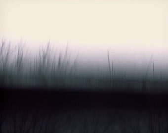 """Abstract landscape photography forest surreal trees mysterious dark blur mauve nature - """"Breaking dawn"""" 8 x 10"""