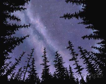 The Stars Turn - poster print