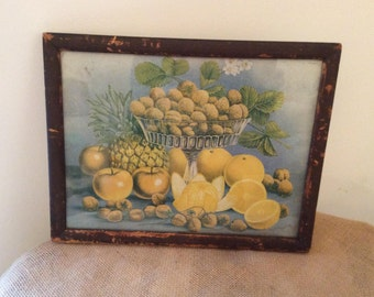 Vintage Fruit print Oranges Pineapple Apples Strawberries decoration wall art gift present collection collectible