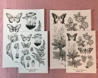 Botanical Wildlife Nature Prints